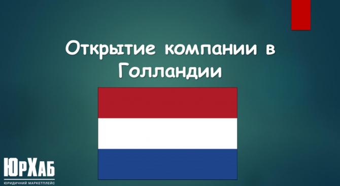 Открытие компании в Голландии изображение 1